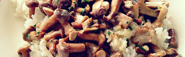 recipe-banner-savoury