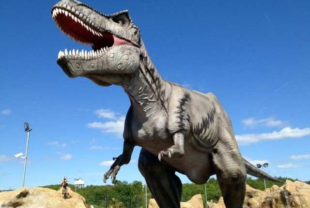 dino facts preview pic