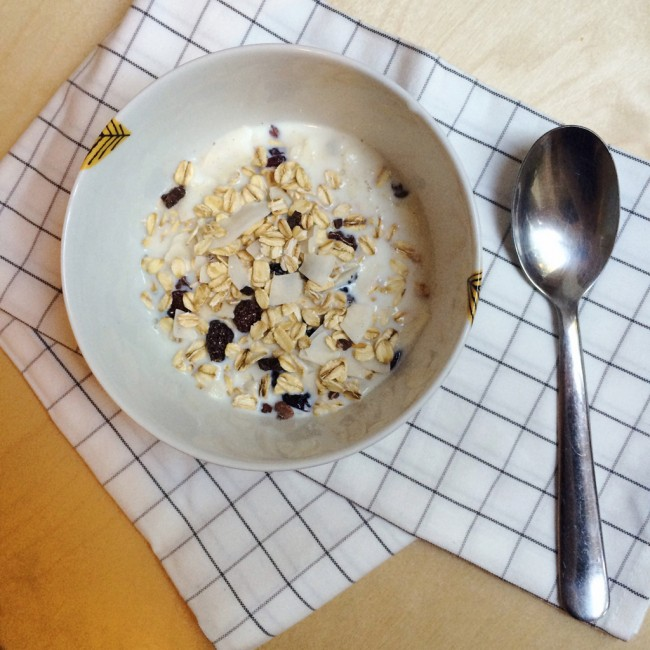Cranberry and Coconut Muesli 02