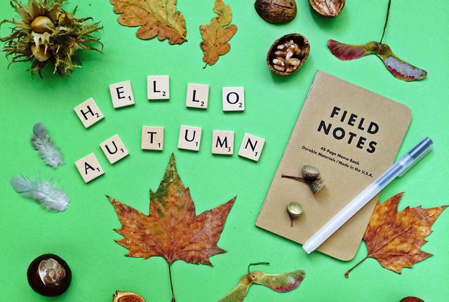 hello-autumn-preview