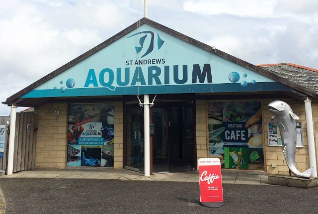 St Andrews Aquarium - Preview