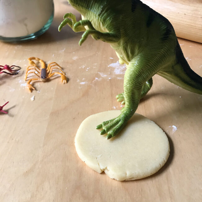 Fossil Cookies Recipe