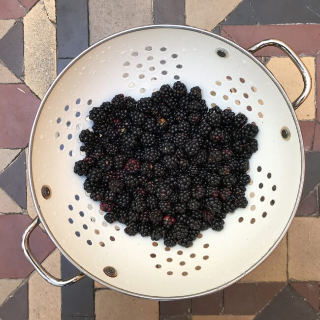 Foraged Brambles