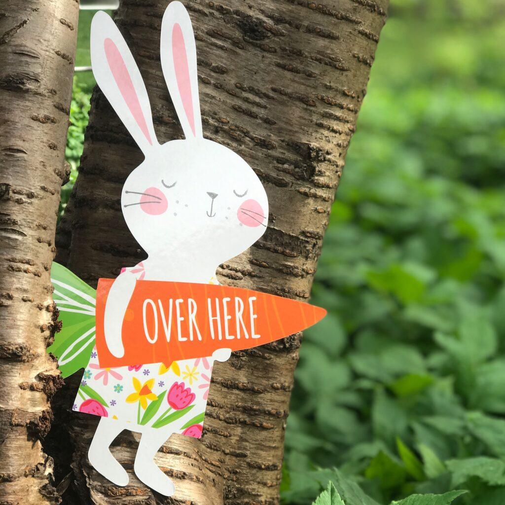 Learning Resources Easter Egg Hunt