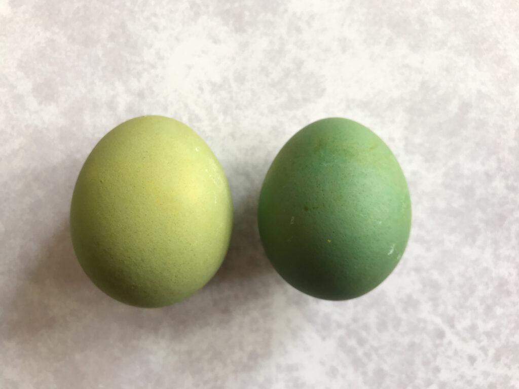 Natural Easter Egg Dyes green